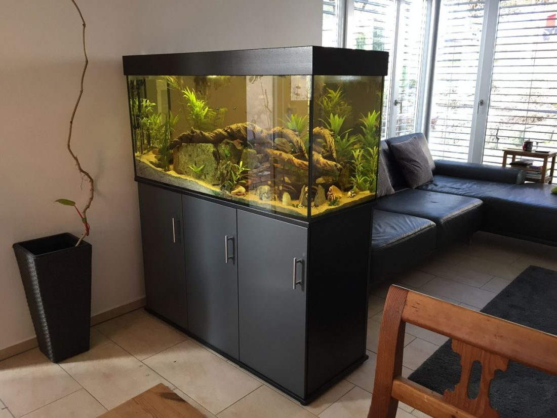 aquariendesign dingolfing raumteiler aquarium. Black Bedroom Furniture Sets. Home Design Ideas